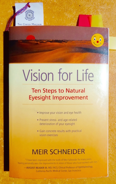 Meir Schneider Vision for Life book. Ten Steps to Natural Eyesight Improvement.
