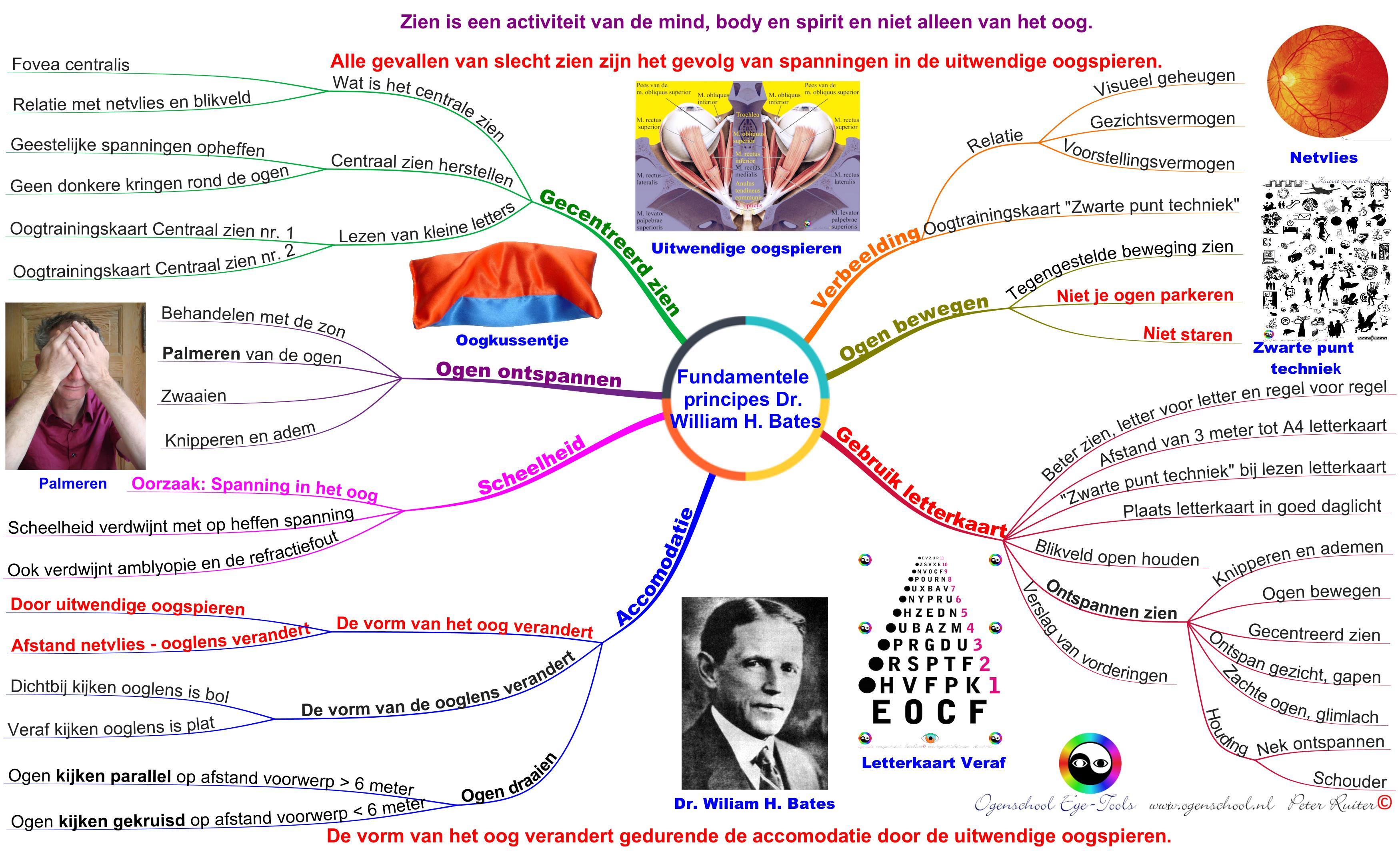 fundamentele-principes-dr-william-h-bates